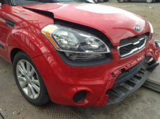 Passenger Tail Light Red Outer Surround Fits 12-13 SOUL 101401