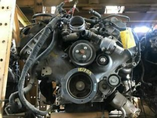 2015-2017 Ford Mustang Engine- 5.0L (VIN F, 8th Digit)